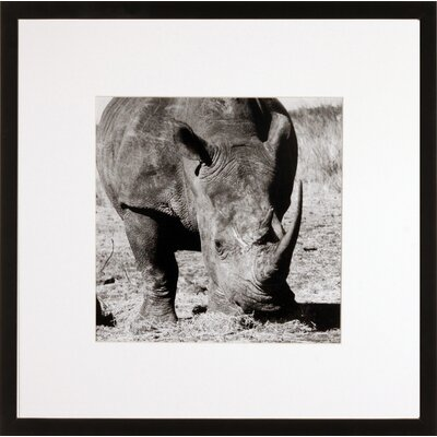 House Additions Rhino Framed Photographic Print