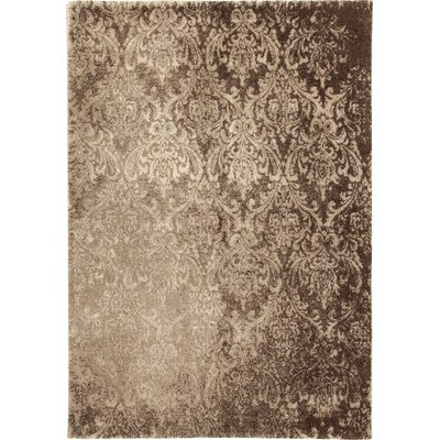 House Additions Roanne Light Beige Area Rug