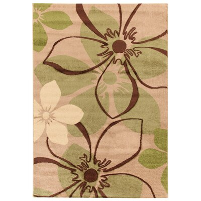 House Additions Chartres Multi-Coloured Area Rug