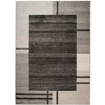 Home & Haus Barite Grey Area Rug