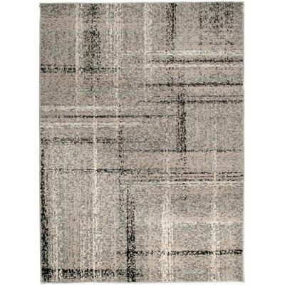 Home & Haus Barite Dark Gray Area Rug