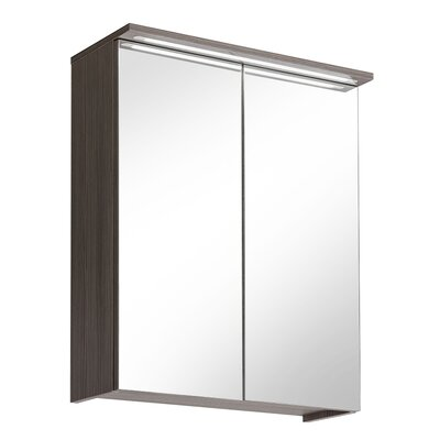 Home & Haus Robin 60cm x 75cm Surface Mount Flat Mirror Cabinet