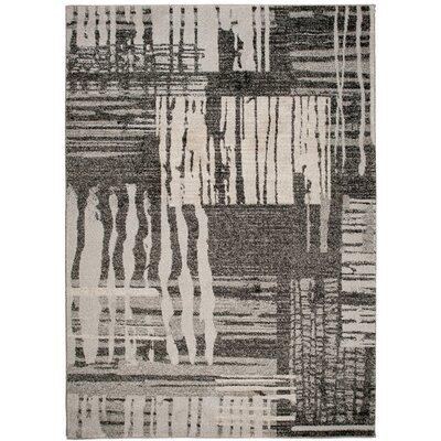 Home & Haus Barite Hand-Woven Black Area Rug