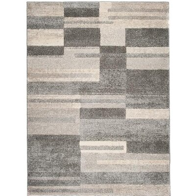 Home & Haus Jasp Middle Grey Area Rug