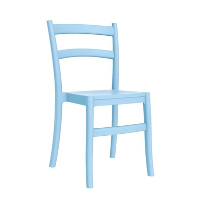 Home & Haus Nunki Dining Chair
