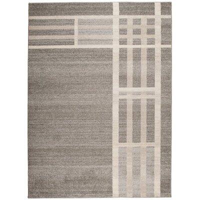 Home & Haus Barite Dark Grey Area Rug