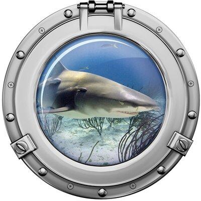 Graz Design Wandaufkleber Bullauge weißer Hai - 40 x 40 cm
