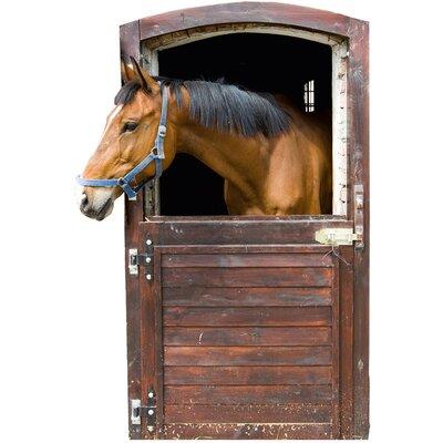 Graz Design Wandaufkleber Stall Box - 85 x 57 cm