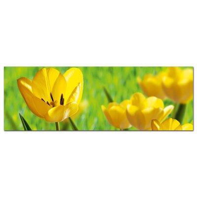 Graz Design Acrylglasbild Gelbe, Tulpen, Blumen