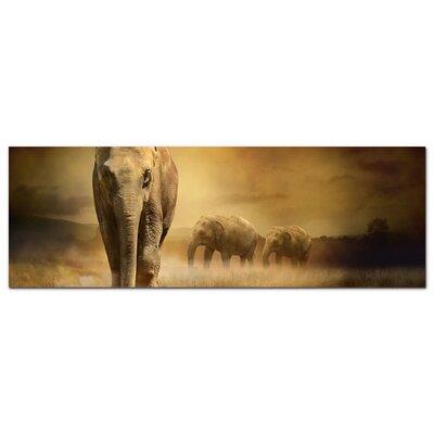 Graz Design Acrylglasbild Afrika, Elefanten, Natur, Wiese