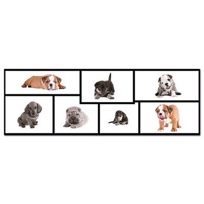 Graz Design Acrylglasbild Hundewelpen, Dackel, Bulldoggen
