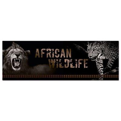 Graz Design Acrylglasbild African Wildlife, Löwe