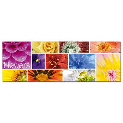 Graz Design Acrylglasbild Blumen