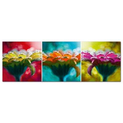 Graz Design Acrylglasbild Blumen, Blüten