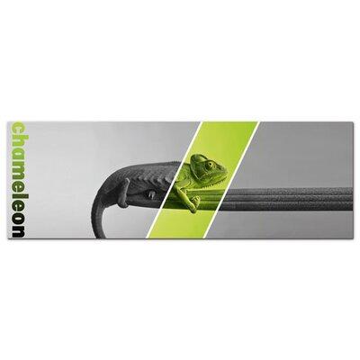 Graz Design Acrylglasbild Chameleon