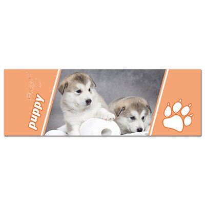 Graz Design Acrylglasbild Sweet Puppy