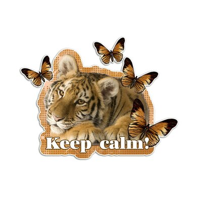 Graz Design Wandsticker Keep calm!, Tiger