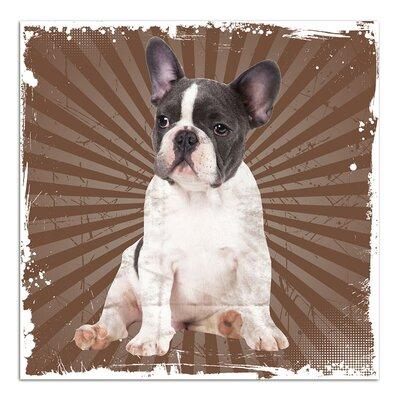 Graz Design Wandsticker Hund, Streifen