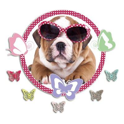 Graz Design Garderobenhaken Hund, Schmetterlinge