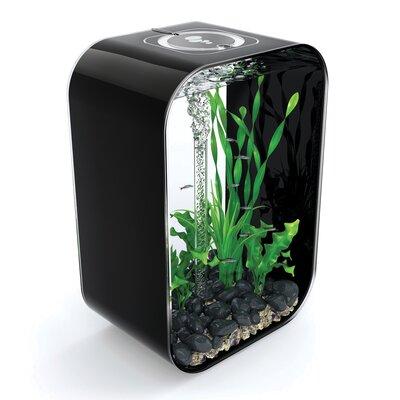 "4 Gallon Life Aquarium Tank Color: Black, Size: 15.7"" H x 11.4"" W x 7.5"" D"