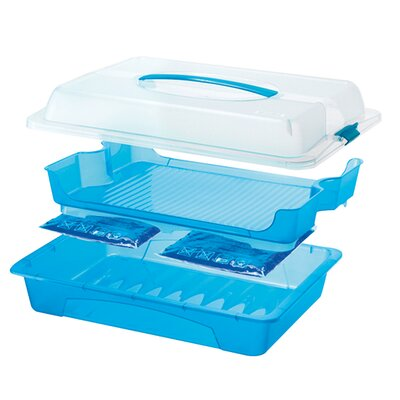 "Rotho 43,5 cm x 29,5 cm Partycooler ""Cool & Fresh"" in Transluzent / Blau"
