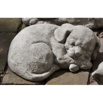 Curled Dog Statue Color: Ferro Rustico Nuovo