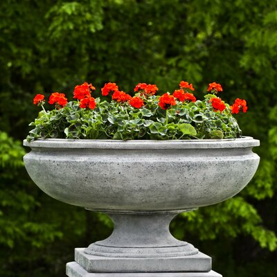 St. Louis Cast Stone Urn Planter Color: Graystone