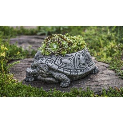 Turtle Cast Stone Statue Planter Color: Ferro Rustico Nuovo