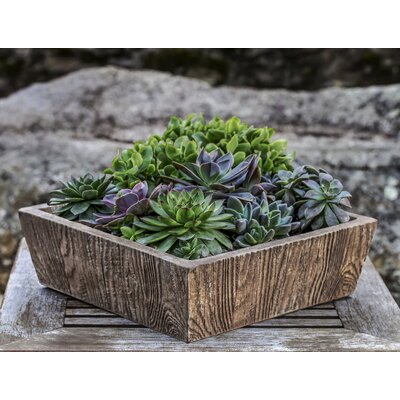 Ravishankar Tapered Aged Limestone Cast Stone Planter Box Color: Nero Nuovo