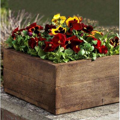 Ravishankar Cast Stone Planter Box Color: Natural