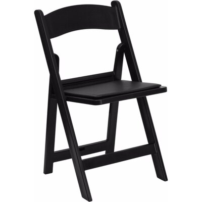 Dryden Folding Chair Finish: Black