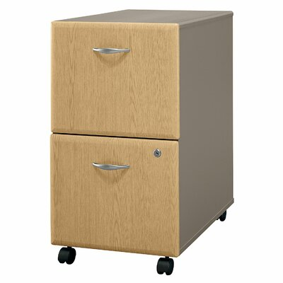 Series A 2 Drawer Vertical File Cabinet Finish: Danish Oak/Sage (assembled)