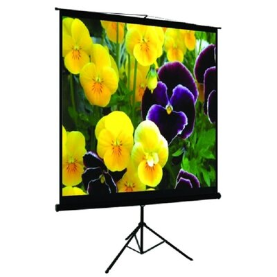 "TygerClaw Black Portable Projection Screen Size: 100"" H x 100"" W"