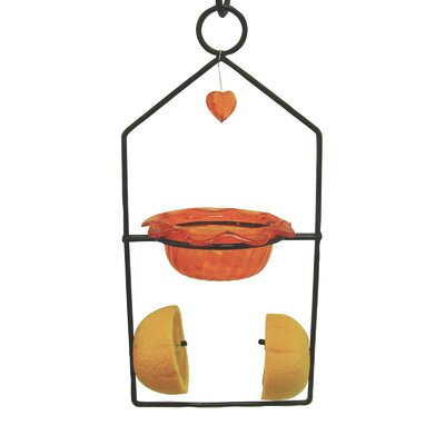Dual Oriole Decorative Bird Feeder