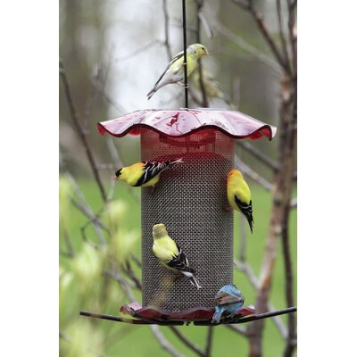 """Forever Nyjer/Thistle Feeder Size: 19"""" H x 10"""" W x 10"""" D"""