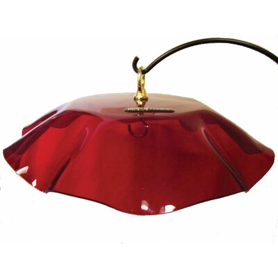 Acrylic Protective Weather Guard Bird Bath with Brass Hardware Color: Red