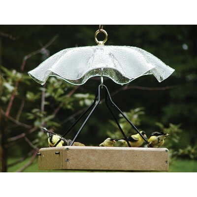 Acrylic Protective Weather Guard Bird Bath with Brass Hardware Color: Clear