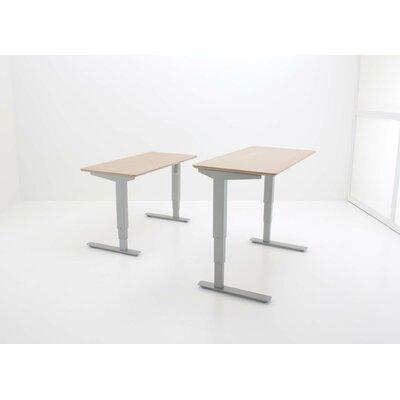 Standing Desk Color: Silver
