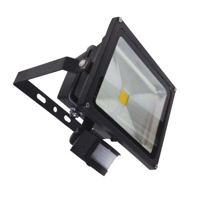 Electric City 1 Head Outdoor Floodlight