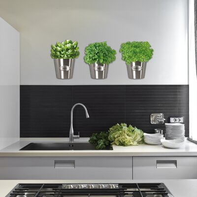 Cuadros Lifestyle Herb Pot Wall Decoration