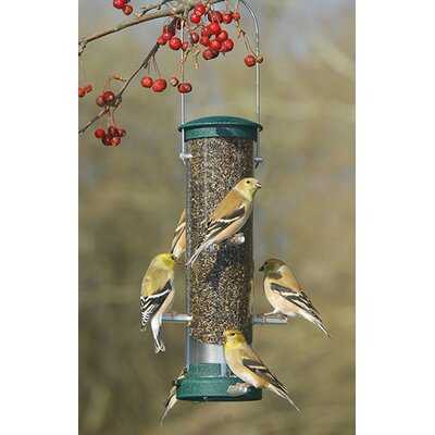 Quick Clean Tube Bird Feeder Size: Small