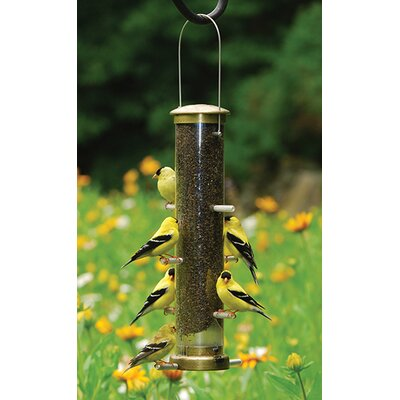 Quick Clean Thistle Tube Bird Feeder Size: Medium