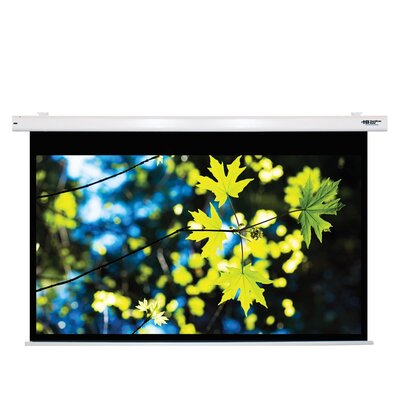 """Matte White Electric Projector Screen Viewing Area: 100"""" Diagonal"""
