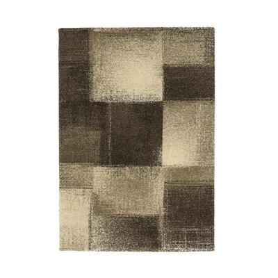 Astra Samoa Brown/White Area Rug