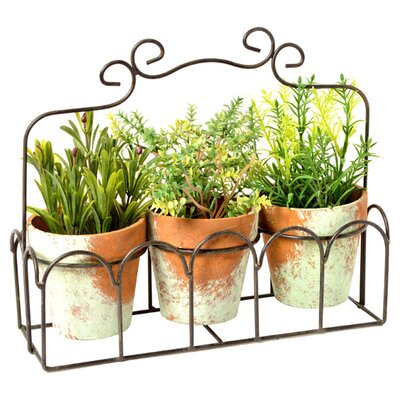Clementine Creations Asla 4 Piece Planter Set