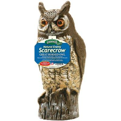 Dalen Molded Owl Statue