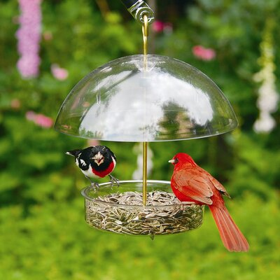 Seed Saver Tray Bird Feeder Color: Clear