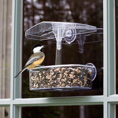 Observer Window Tray Bird Feeder