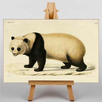 Big Box Art Panda Japanese Oriental Graphic Art on Canvas