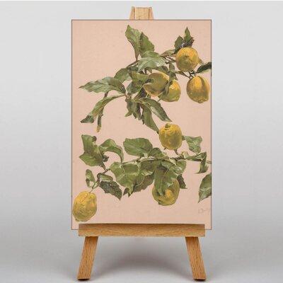 Big Box Art Lemon Tree by Alice Bailly Art Print on Canvas